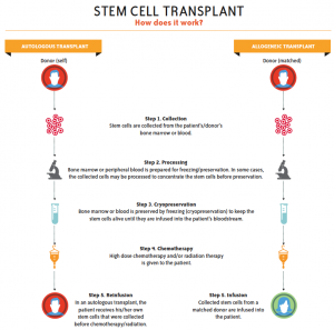 Communication on this topic: What Is Autologous Stem Cell Transplantation, what-is-autologous-stem-cell-transplantation/